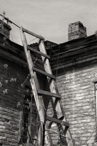 Деревянная лестница своими руками приставная: хоть и смотрится красиво, но небезопасно
