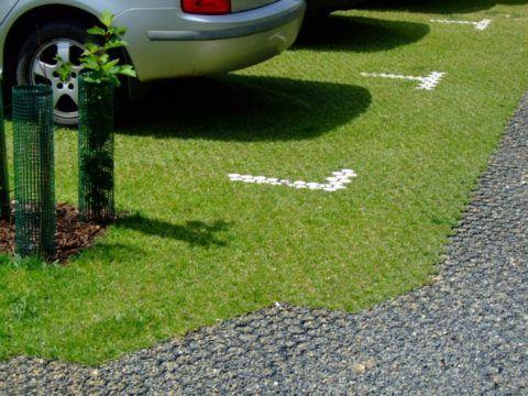 Фото газона с пластиковой решеткой