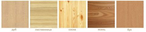 Структура некоторых пород дерева