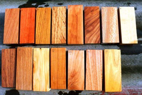 Для отделки можно использовать любые породы древесины