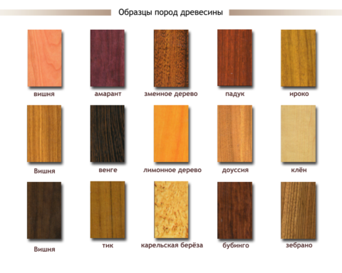Фактура различных пород дерева