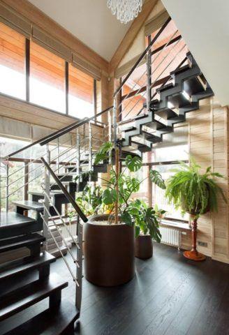 Высокие живые растения для оформления пространства под лестницей