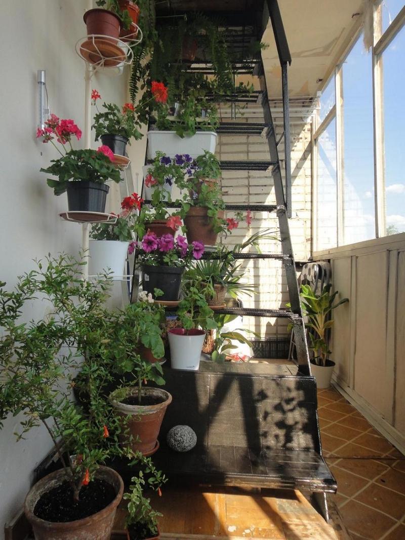 Балкон с лестницей дизайн фото.