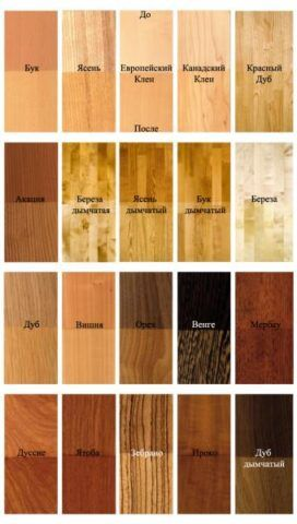 Наиболее распространенные породы древесины