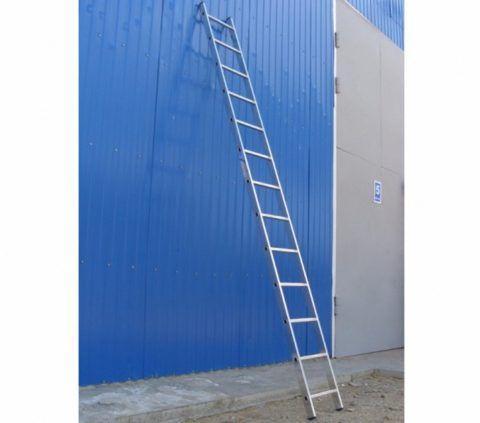 Лестница приставная Н=5 м — максимум высоты