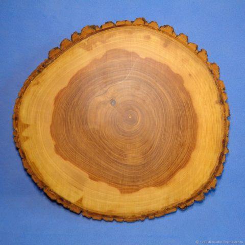 Обилие смолы придаёт хвойным породам деревьев и сосне, в частности, характерный насыщенный желтоватый цвет