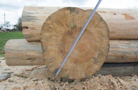 Радиусная плашка, отпиленная от ствола