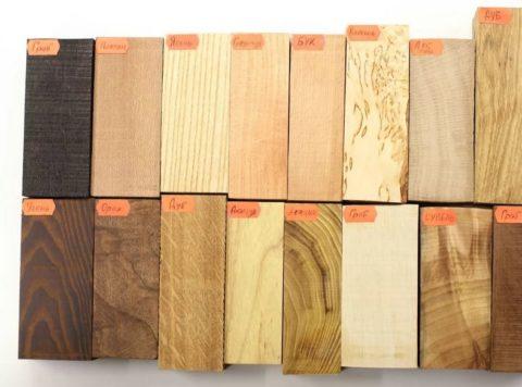 Внешний вид древесины разных пород